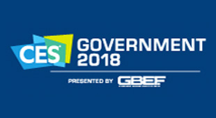 CES Government